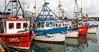 Fishing Boats Dunmore East_1